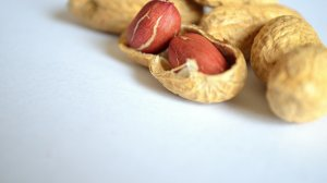 Dr. Saad Saad talks about peanut allergies